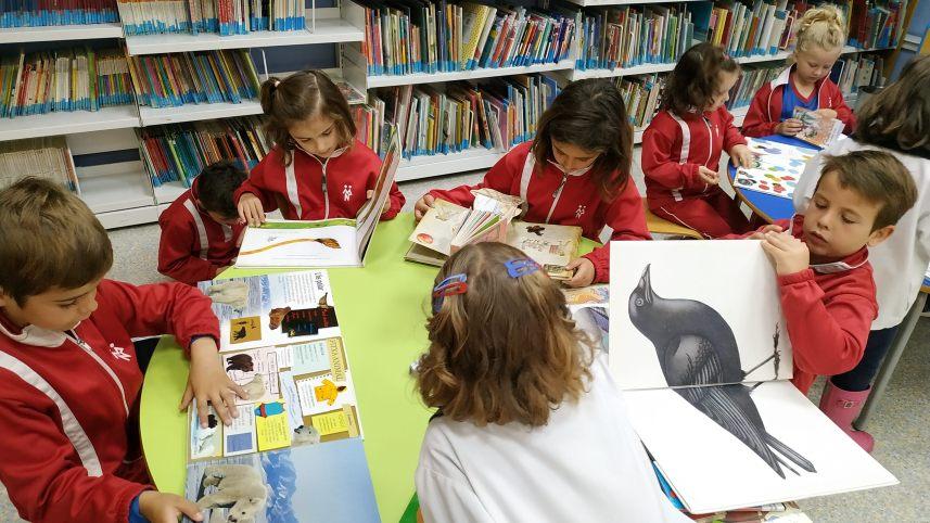 Los alumnos de P5 visitan la Biblioteca Pública