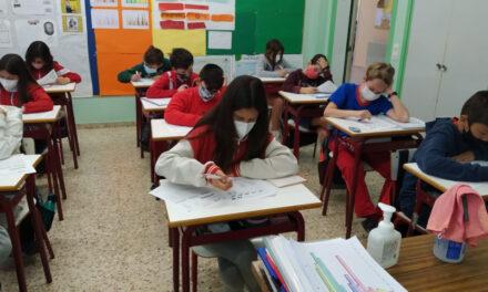 Les proves matemàtiques Cangur, entre la raó i l'enginy