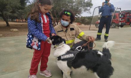 """Projecte """" Els gossos"""""""